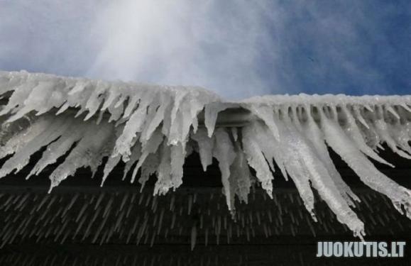 Ledo namai