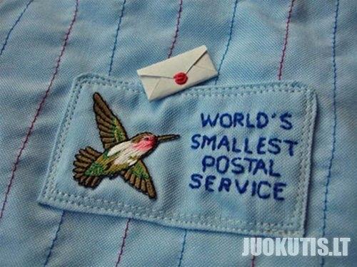 Pats mažiausias laiškas