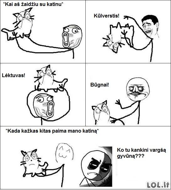 Žaidimai su katinu