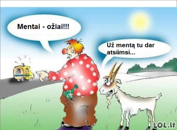 Mentai ožiai