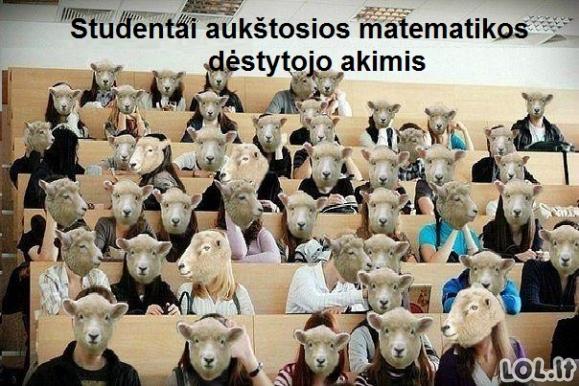 Studentai profesorių akimis