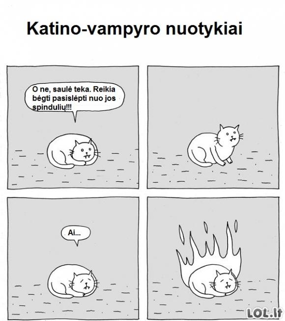Katino-vampyro nuotykiai