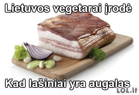 Vegetariški lašiniai