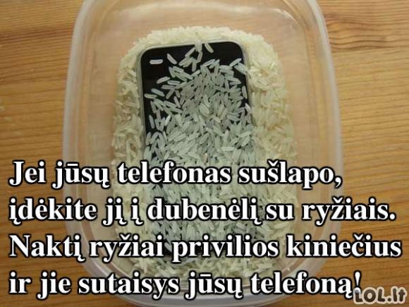 Sušlapusį telefoną taiso ne ryžiai, o ...