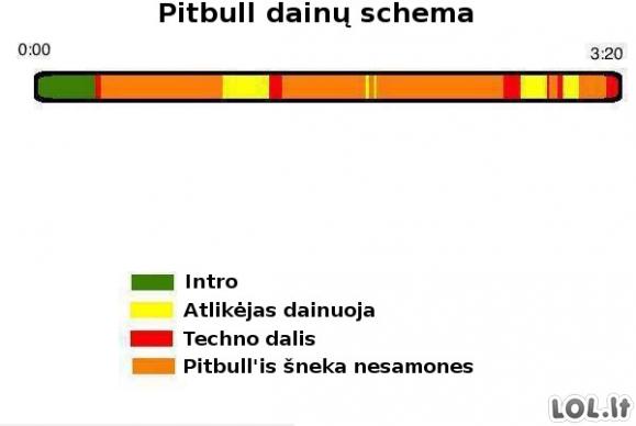 Pitbull dainų sandara