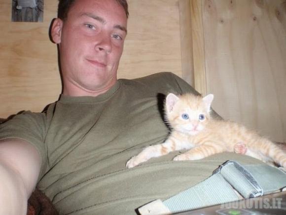 Kačiukai iš Afganistano