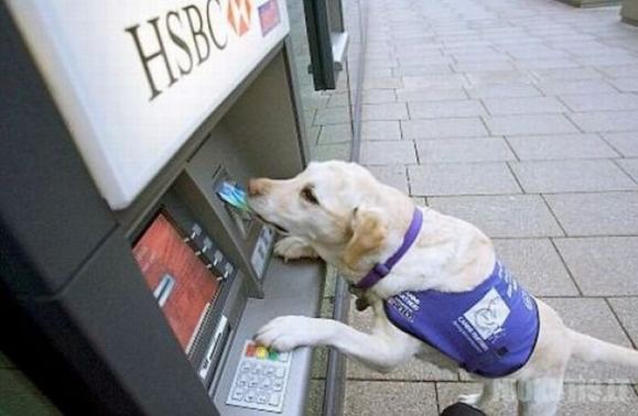 Linksmi bankomatai