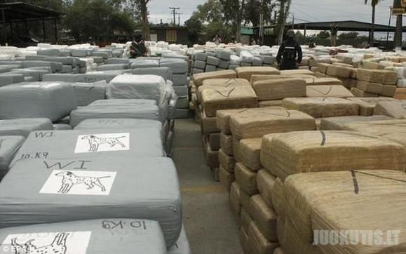 Meksikoje sulaikyta rekordinė marihuanos siunta