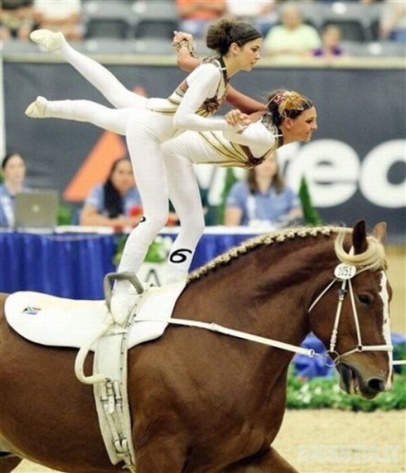 Akrobatika ant arklių
