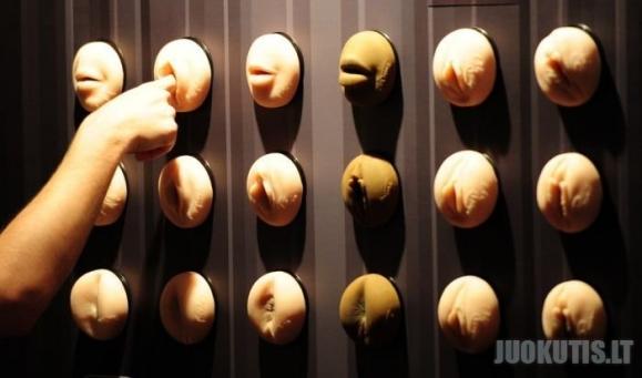 Erotinė paroda Berlyne