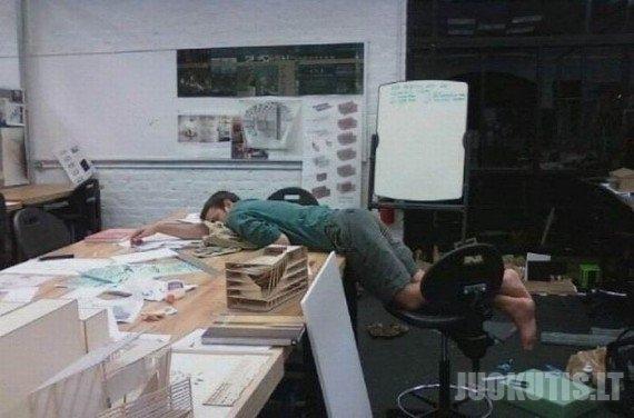 Kam miegoti namie jei gali miegoti darbe? (17 nuotraukų)
