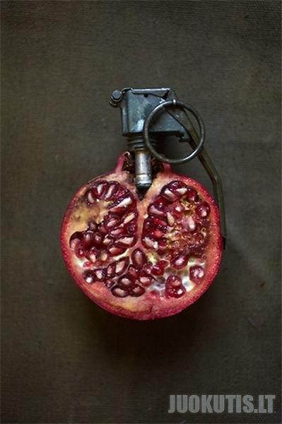 Sarah Illenberger menas (13 nuotraukų)
