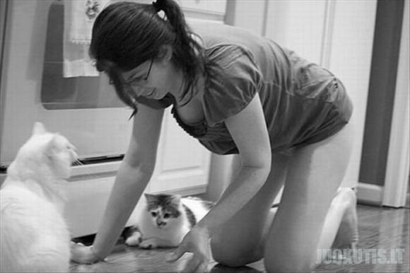 Gyvūnai ir krūtinės (24 nuotraukos)