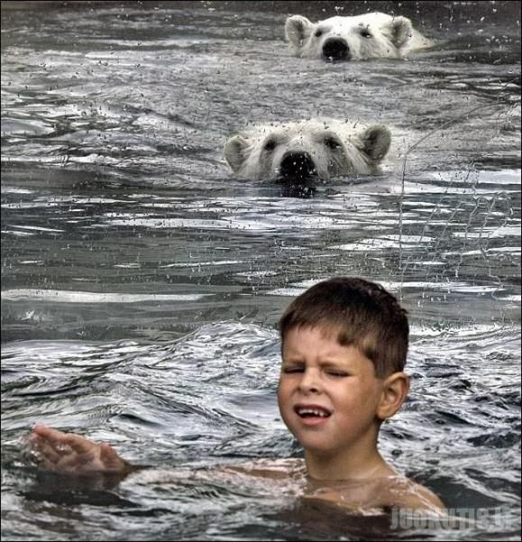 Tai nėra photoshop\'as :) (3 nuotraukos)