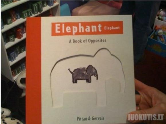 Gera vaikiska knygele apie drambli