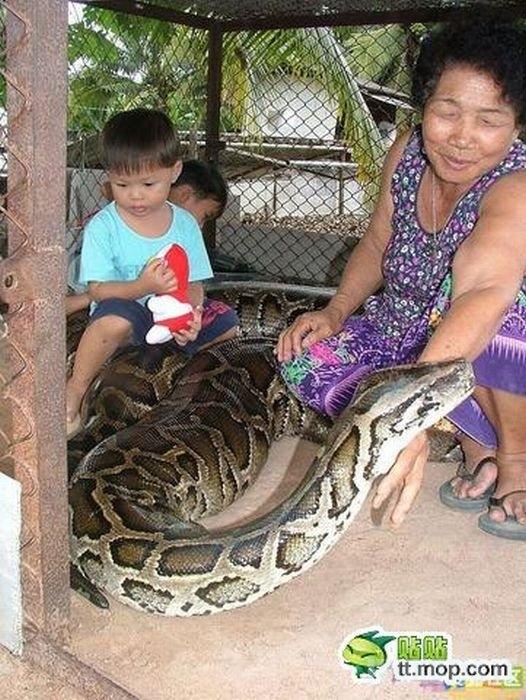 Kelionė į zoologijos sodą azijoje