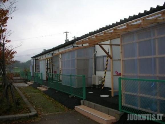 Naujų namų statybos Japonijoje