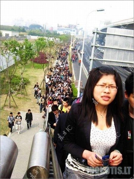 Auto renginyje - kinų skruzdėlynas