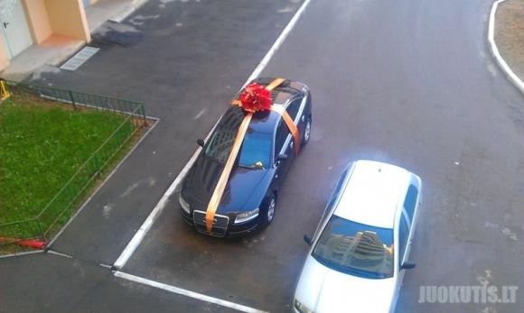 Netikėta dovana ryte