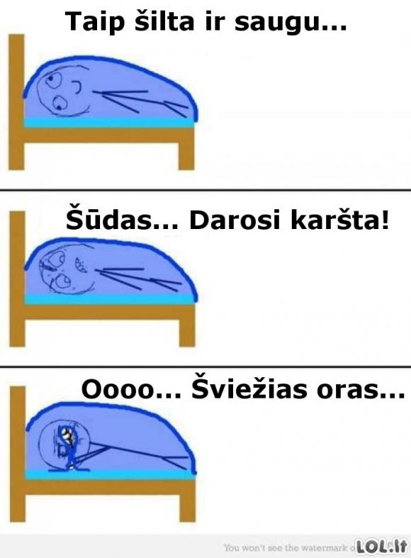 Kiekvieno iš mūsų miego ypatumai