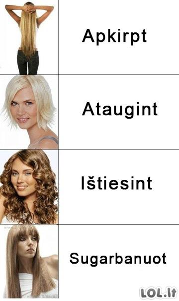 Panelės ir jų šukuosenų darymosi logika