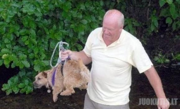 Šuns gelbėjimas
