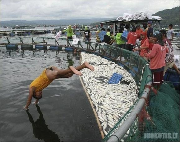 Filipinuose masiškai gaišta žuvys