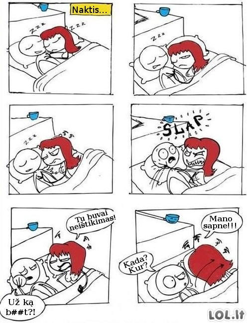 Miegančios moters logika