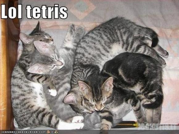 Tetris mūsų gyvenime