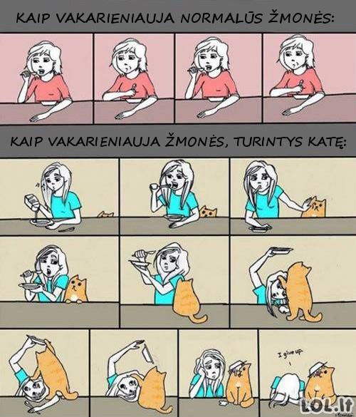 Kačių savininkų valgymo ypatumai