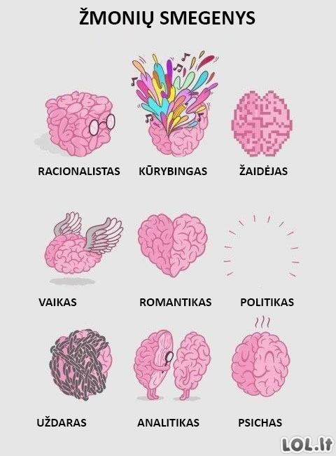 Kaip atrodo įvairių žmonių smegenys