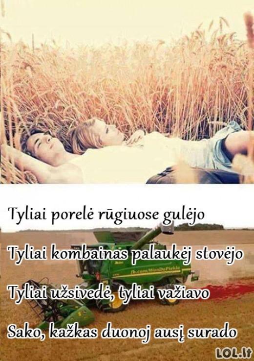 Romantiškoji kaimo poezija