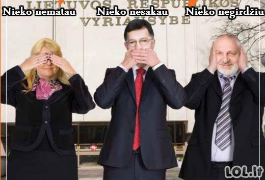 Vyriausybė po rinkimų