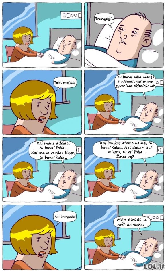 Vyriškos logikos viršūnė