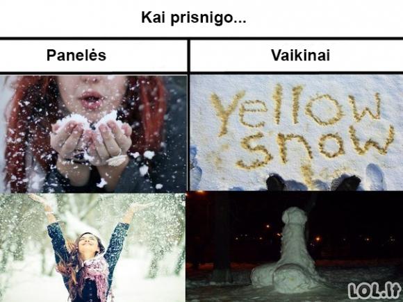Žmonių žiemos džiaugsmai