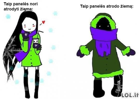 Kodėl panelės nemėgsta žiemos.