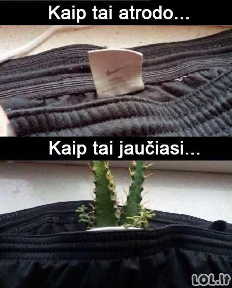 Naujų drabužių skausmas