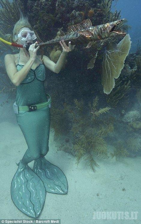 Povandeninis Floridos festivalis