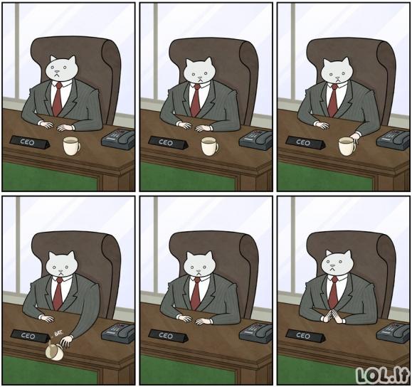 Katės-verslininkės darbotvarkė