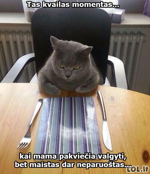 Kai mama pakviečia valgyti...