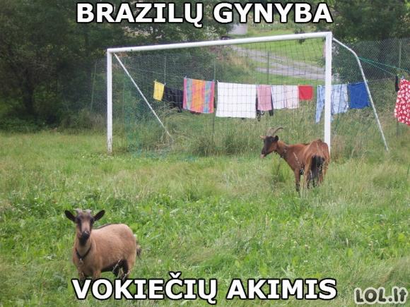 Brazilų pasididžiavimas - gynyba