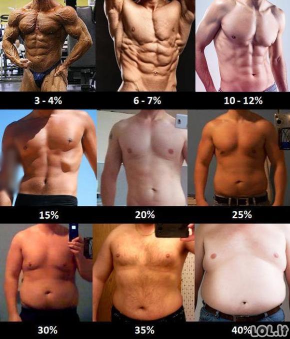 Kaip procentaliai atrodo riebalai ant kūno?