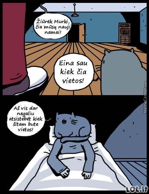 Katiniška logika