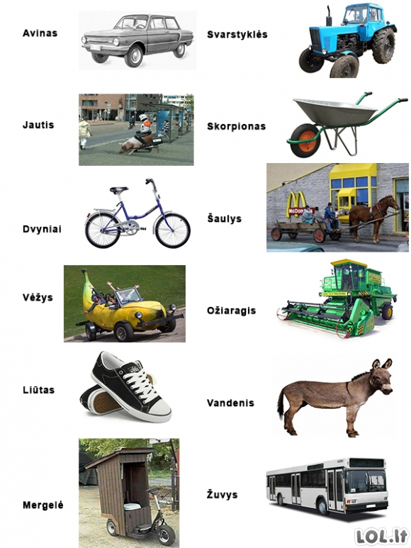 Transportas pagal zodiako ženklus