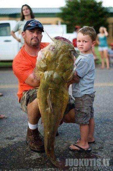 Milžiniškos žuvys