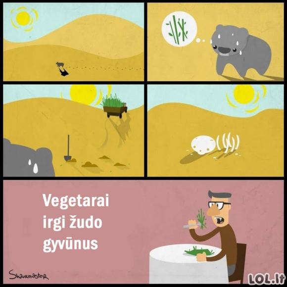 Visa tiesa apie vegetarus
