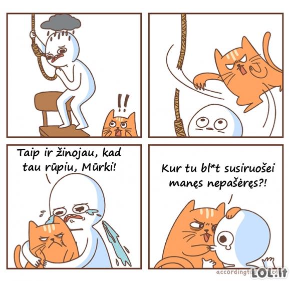 Katėms rūpi jūsų gyvybė!