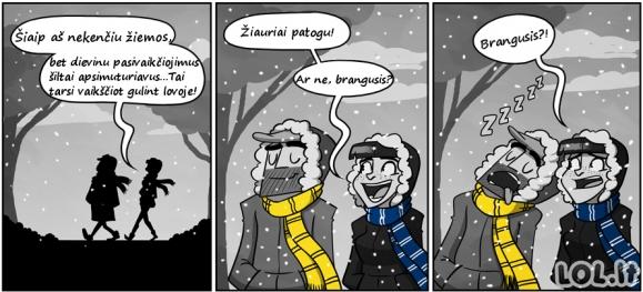 Didžiausias žiemos privalumas