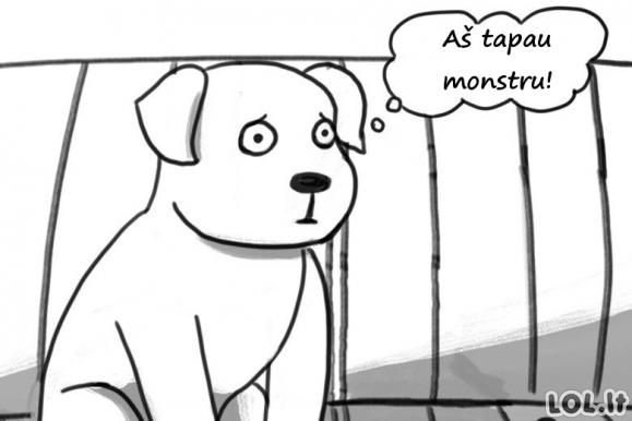 Šuniuko sukilimas prieš terorą