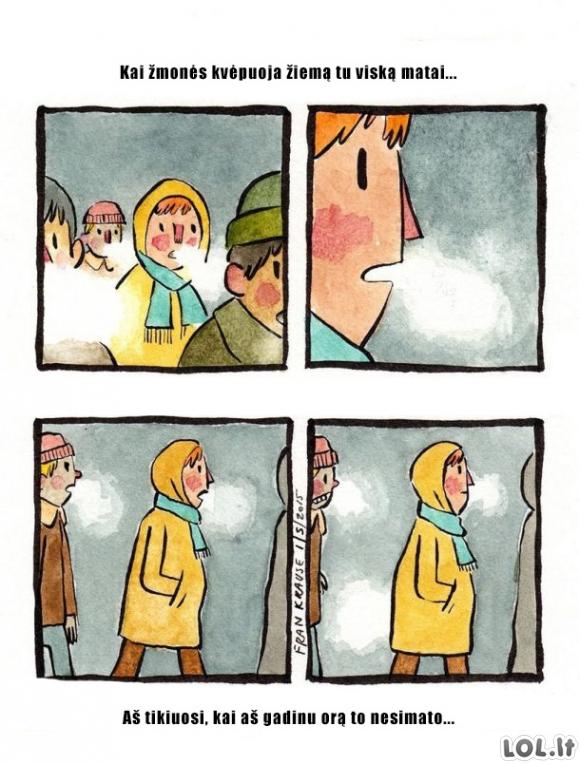 Žiemos problemos